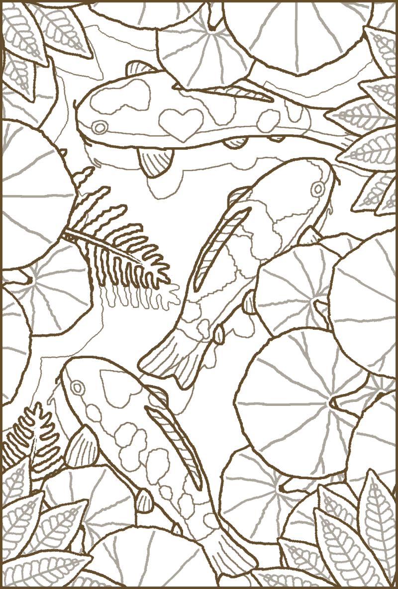 塗り絵5月鯉