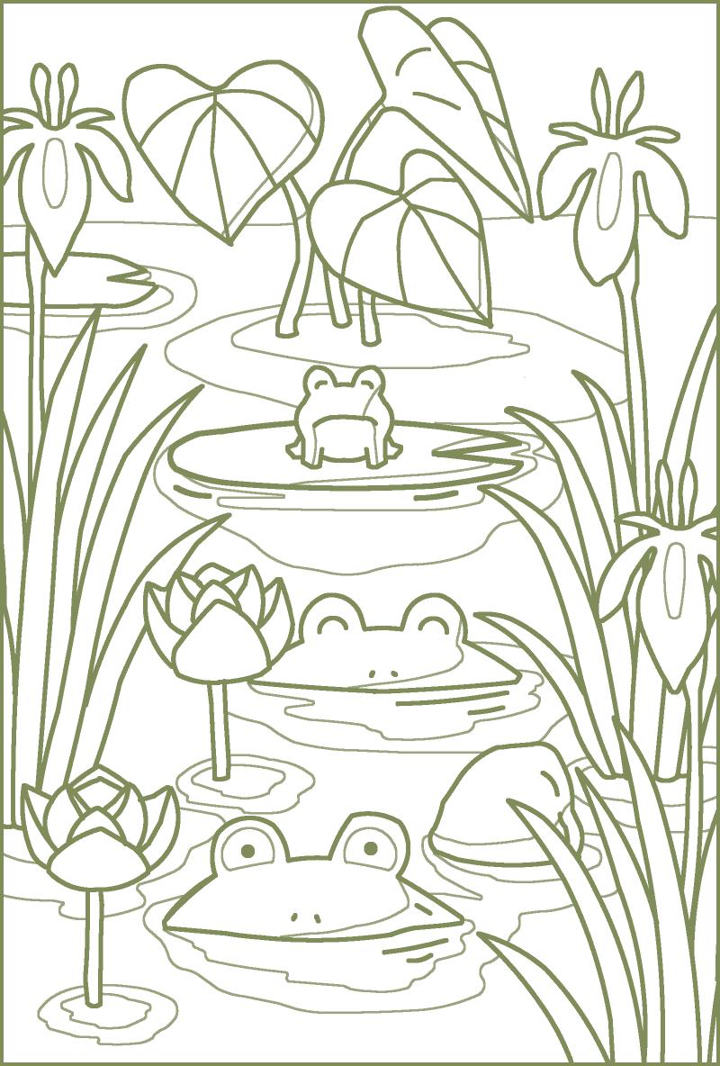 塗り絵6月池
